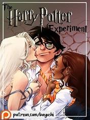 Bayushi – The Harry Potter Experiment